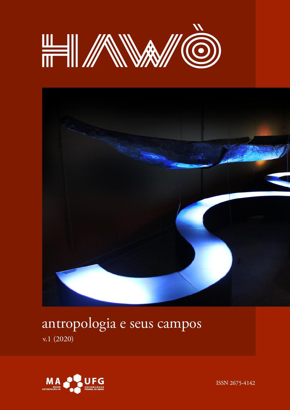 Visualizar v. 1 (2020): Antropologia e seus campos - Dossiê Indira