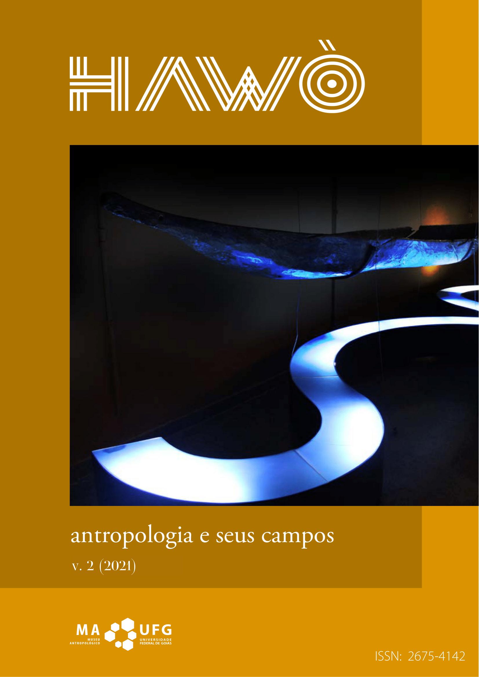 Visualizar v. 2 (2021): Antropologia e seus campos